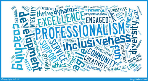 words to describe the profession of coaching for ICF New Mexico